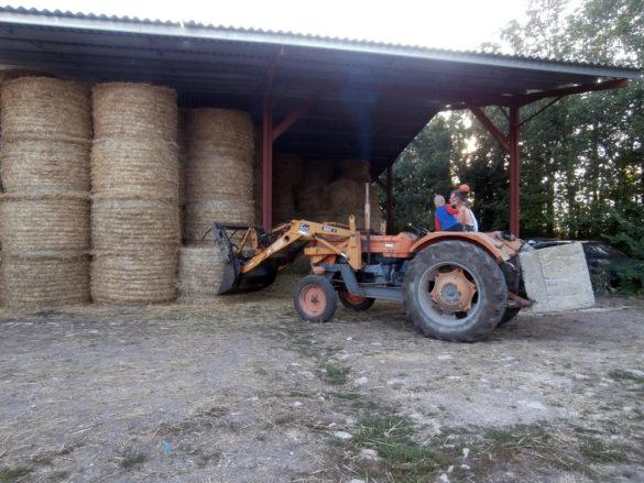 Work at the Champ du Parc Farm