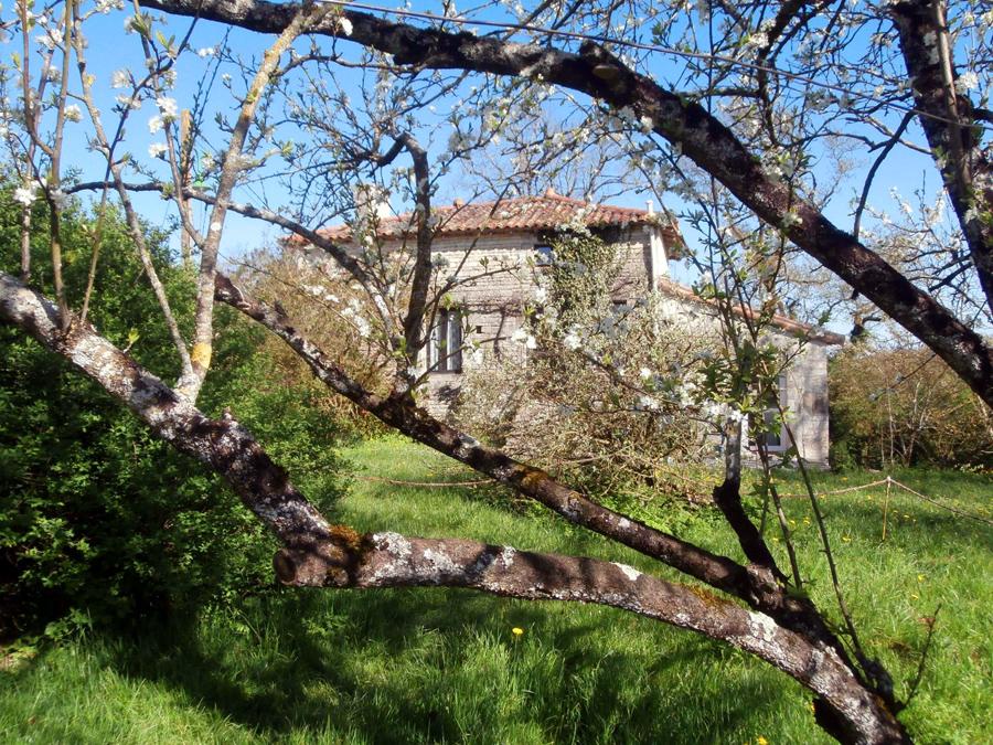 Location de gîte et visite à la ferme dans les Deux-Sèvres à Chef-Boutonne